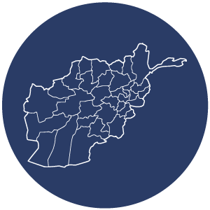 Afghanistan Const